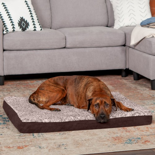 Espresso Mattress with Memory Foam Dog & Cat