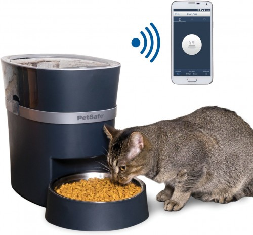 Smart Dog & Cat Feeder in Blue