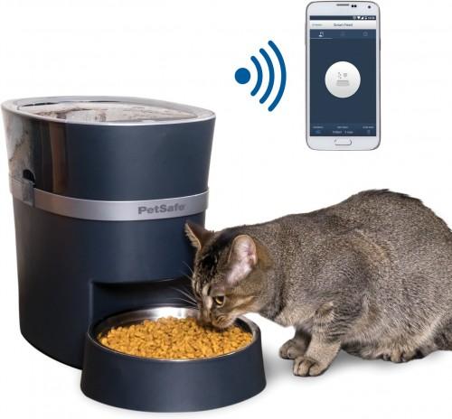 Smart Dog & Cat Feeder in Blue