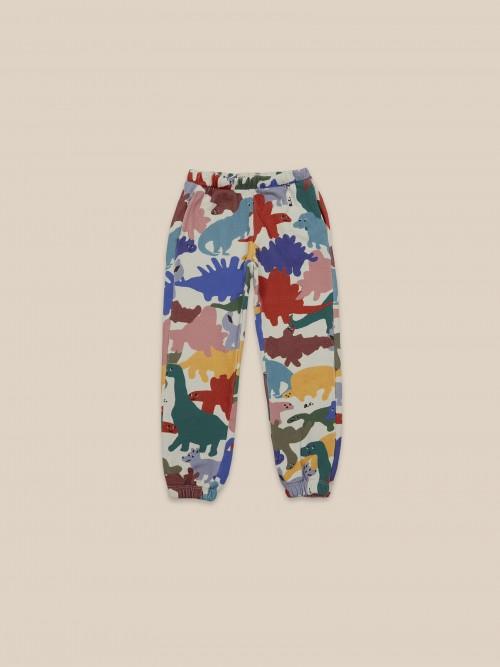 Colorful Jogging Pants Trousers