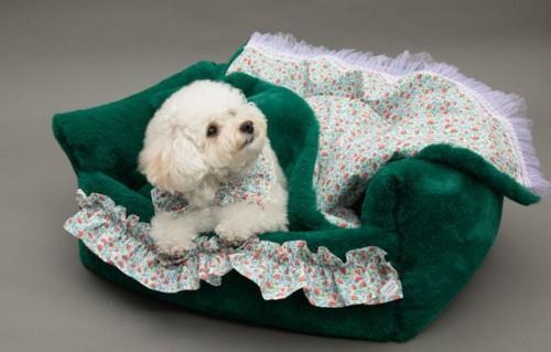 Royal Green Dog Bed