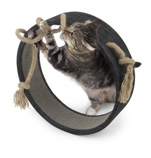 Ideal Cat Scratcher