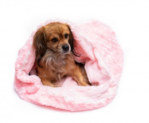 Adorable Pink Blanket