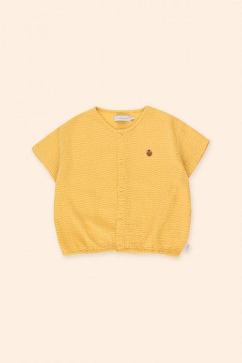 Crop Shirt With Iris Blue Print