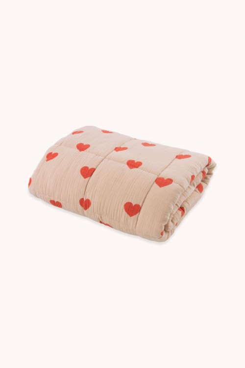 Soft Double Layer Small Blanket