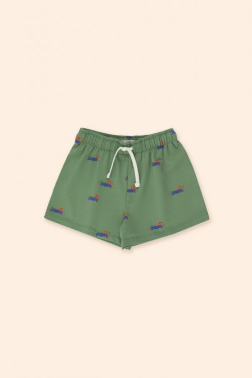 Paddle Short in Green and Iris Blue